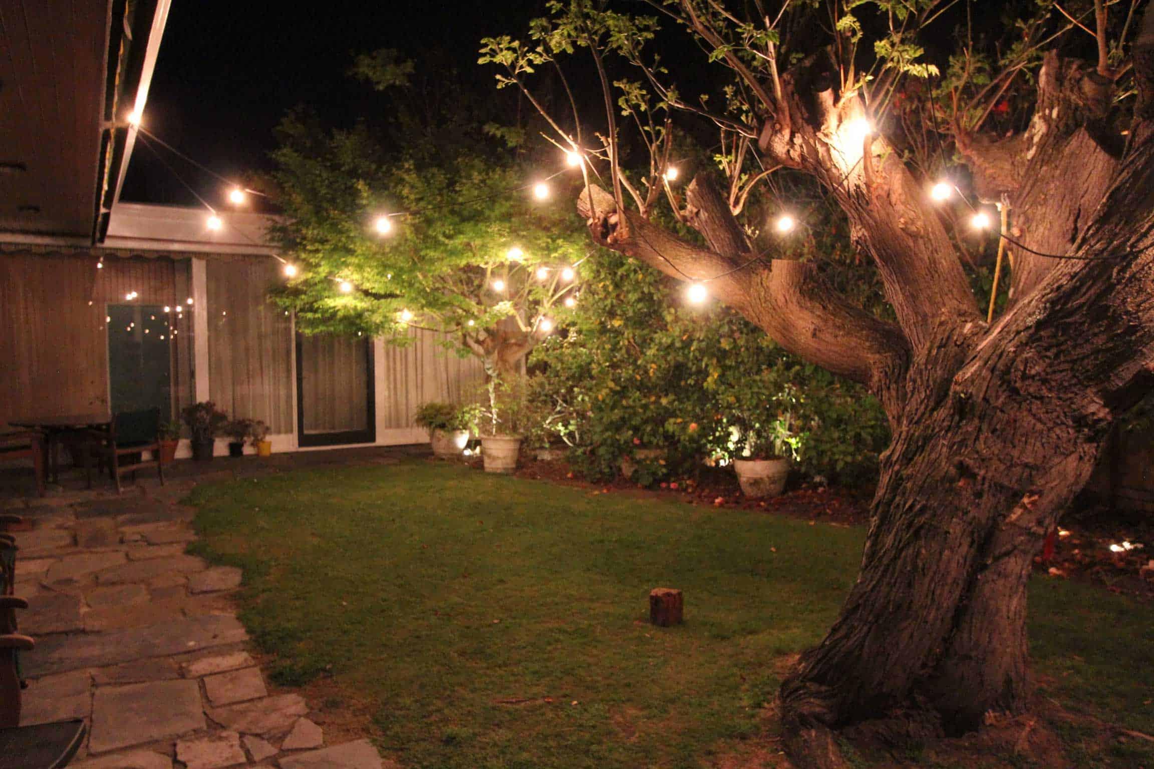garden festoon lighting melbourne